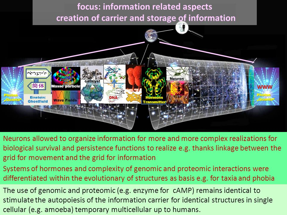 """Mecha- noeitons WWW Photon """"Quanta focus: information related aspects creation of carrier and storage of informationWWW Einstein: Ghostfield Wave Fields Masse particle catalyst DNA The use of genomic and proteomic (e.g."""
