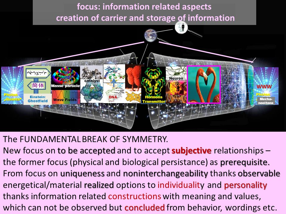 WWW focus: information related aspects creation of carrier and storage of information to be accepted subjective prerequisite.