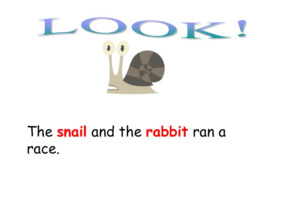 The snail and the rabbit ran a race. Snail, rabbit are your compound subjects!!!!