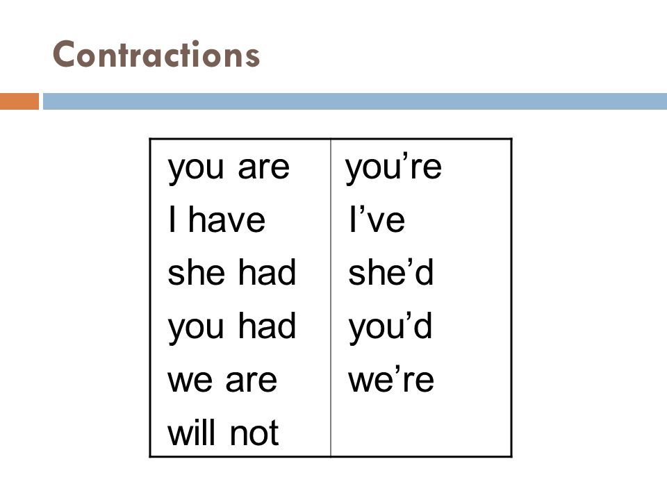 Contractions you are I have she had you had we are will not you're I've she'd you'd we're