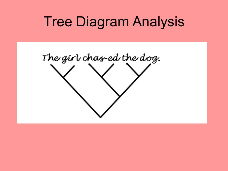 Tree Diagram Analysis