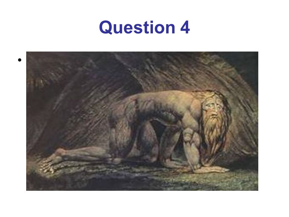 Question 4 What does the poem glorify.the tiger. the maker of the tiger.