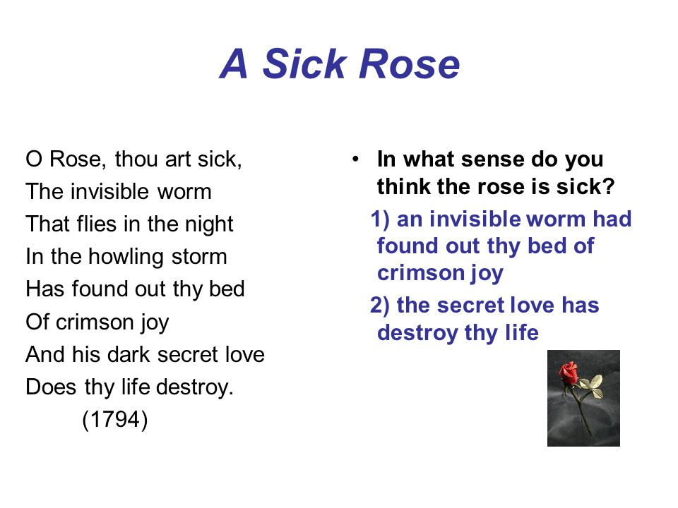 A Sick Rose O Rose, thou art sick, The invisible worm That flies in the night In the howling storm Has found out thy bed Of crimson joy And his dark secret love Does thy life destroy.