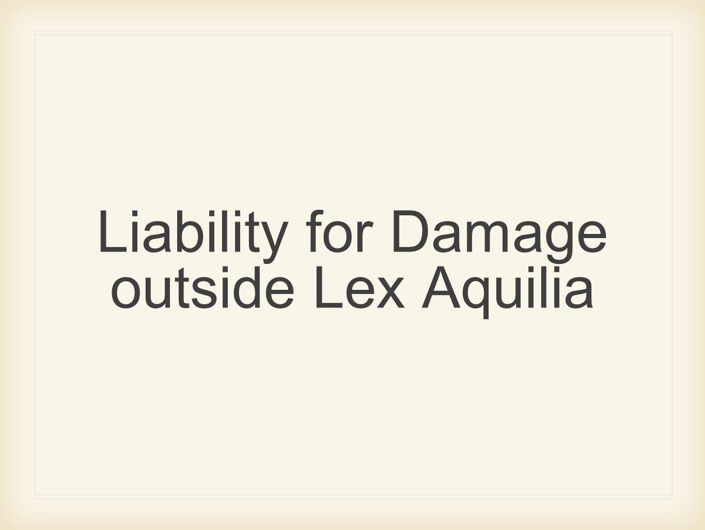 Liability for Damage outside Lex Aquilia