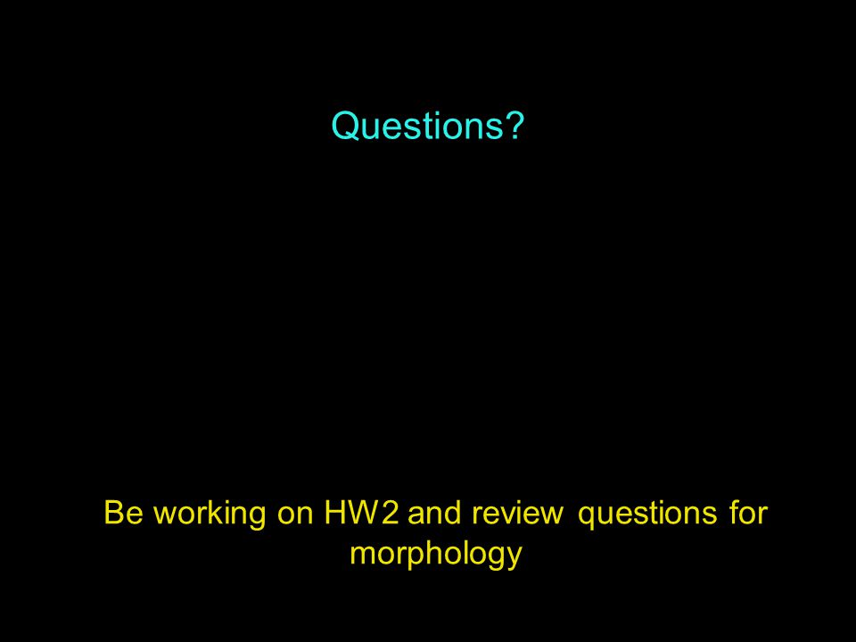 Questions Be working on HW2 and review questions for morphology