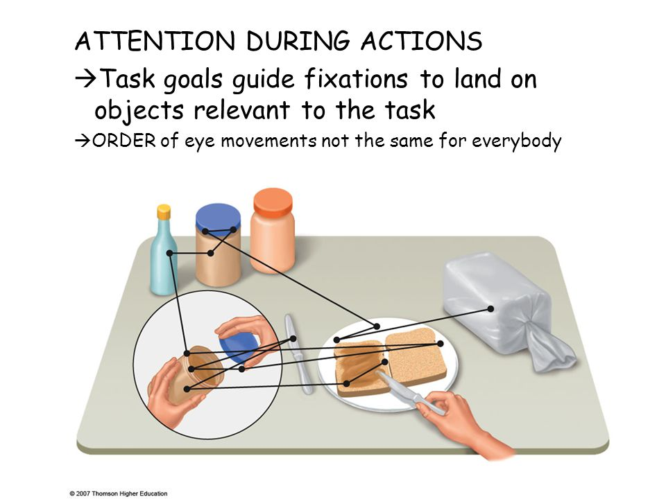 ATTENTION DURING ACTIONS  Task goals guide fixations to land on objects relevant to the task  ORDER of eye movements not the same for everybody