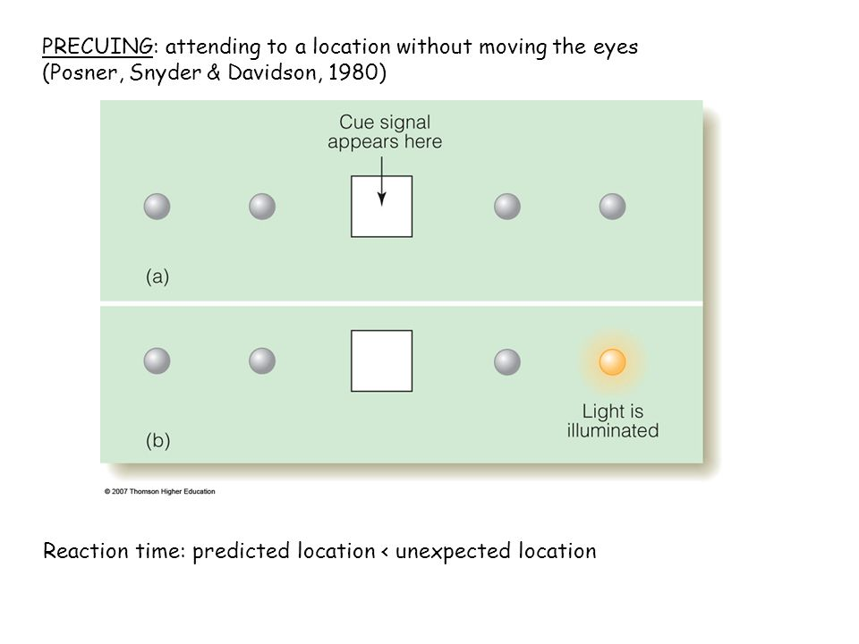 PRECUING: attending to a location without moving the eyes (Posner, Snyder & Davidson, 1980) Reaction time: predicted location < unexpected location