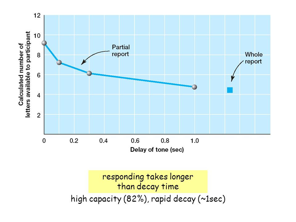 high capacity (82%), rapid decay (~1sec) responding takes longer than decay time