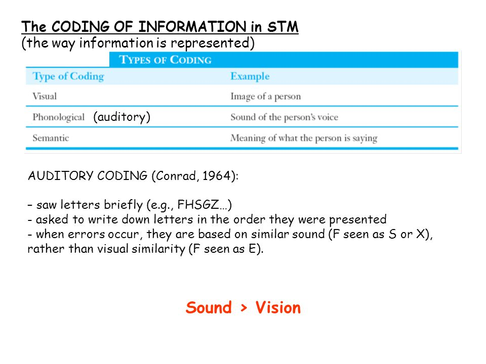 (auditory) The CODING OF INFORMATION in STM (the way information is represented) AUDITORY CODING (Conrad, 1964): – saw letters briefly (e.g., FHSGZ…) - asked to write down letters in the order they were presented - when errors occur, they are based on similar sound (F seen as S or X), rather than visual similarity (F seen as E).