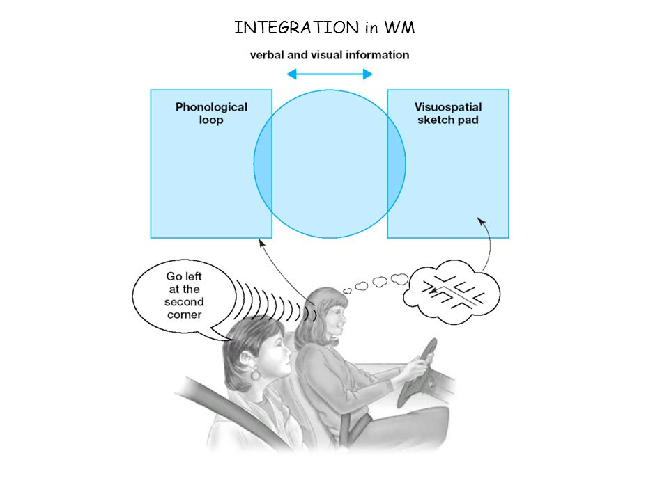 INTEGRATION in WM