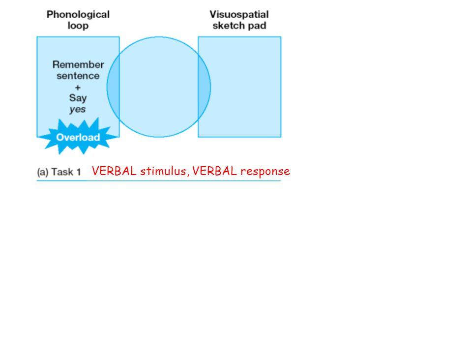 VERBAL stimulus, VERBAL response VERBAL stimulus, SPATIAL response