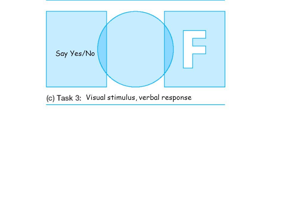 Say Yes/No Visual stimulus, verbal response Visual stimulus, visual response Point to Yes/No
