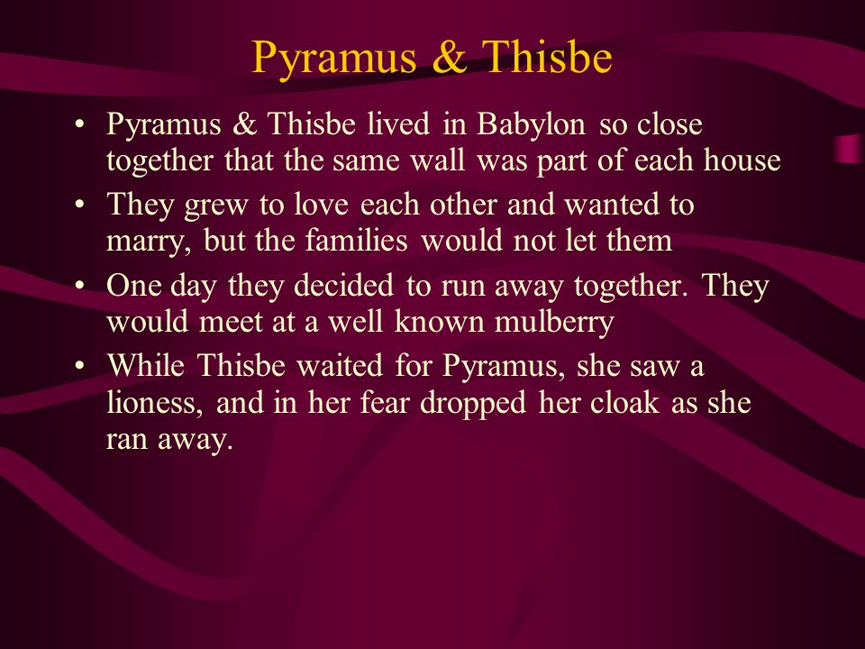 Pyramus & Thisbe Pyramus & Thisbe lived in Babylon so close together that the same wall was part of each house They grew to love each other and wanted to marry, but the families would not let them One day they decided to run away together.