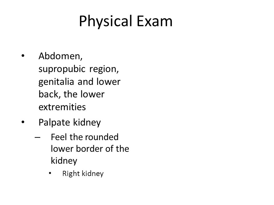 Physical Exam Abdomen, supropubic region, genitalia and lower back, the lower extremities Palpate kidney – Feel the rounded lower border of the kidney