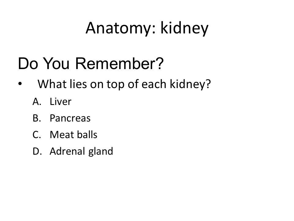 What hormones do the adrenal glands secrete.
