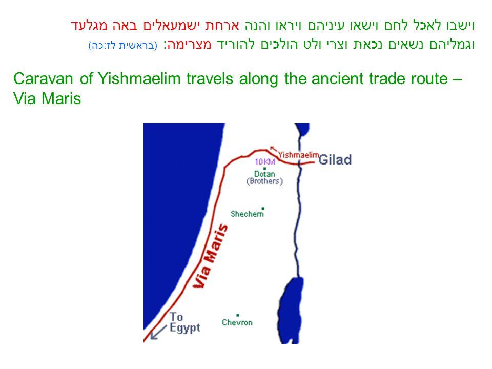 וישבו לאכל לחם וישאו עיניהם ויראו והנה ארחת ישמעאלים באה מגלעד וגמליהם נשאים נכאת וצרי ולט הולכים להוריד מצרימה: (בראשית לז:כה) Caravan of Yishmaelim travels along the ancient trade route – Via Maris