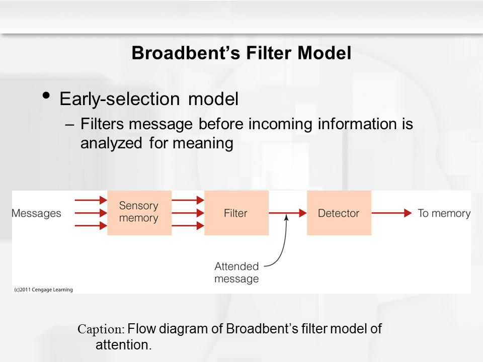 Broadbent's Filter Model Early-selection model –Filters message before incoming information is analyzed for meaning Caption: Flow diagram of Broadbent