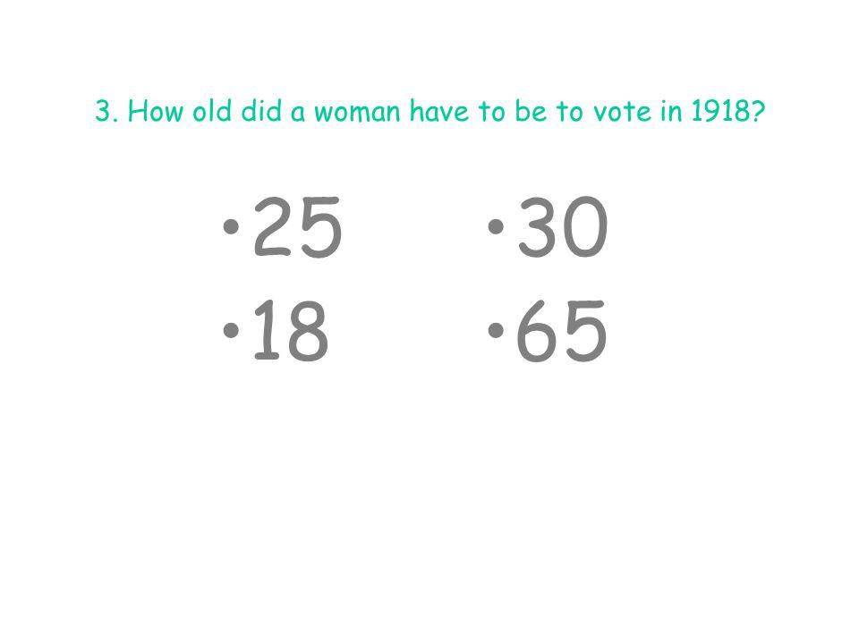 8.Who was Emmeline Pankhurst.