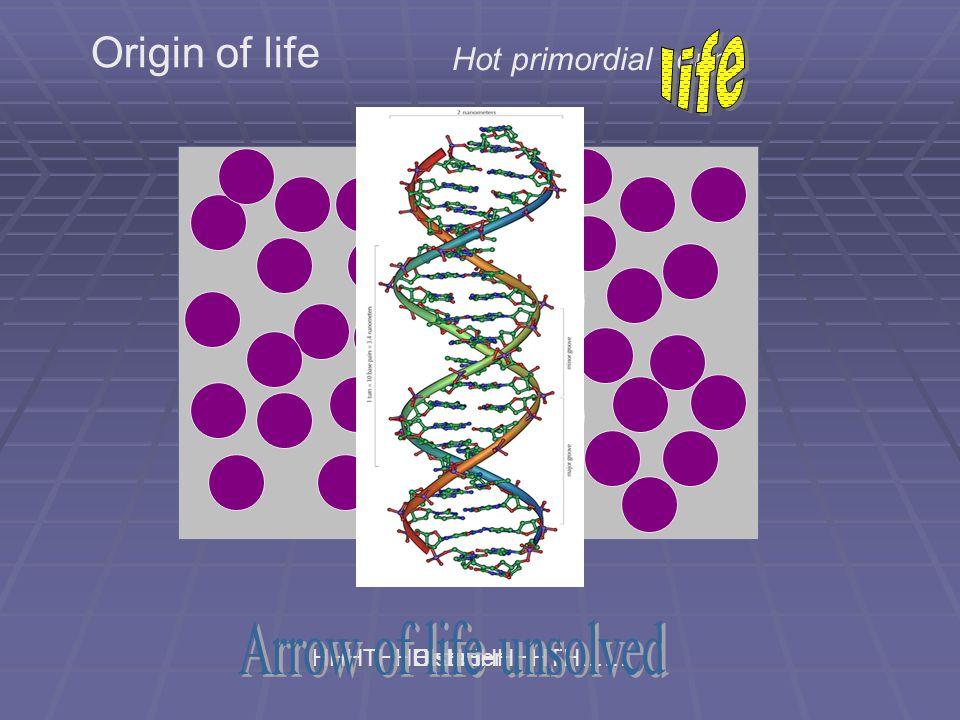 DisorderOrderHHHTHHHHHHHHHHTH…… Origin of life Hot primordial soup