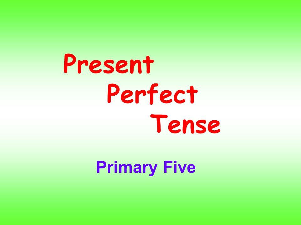 Present Perfect Tense Primary Five