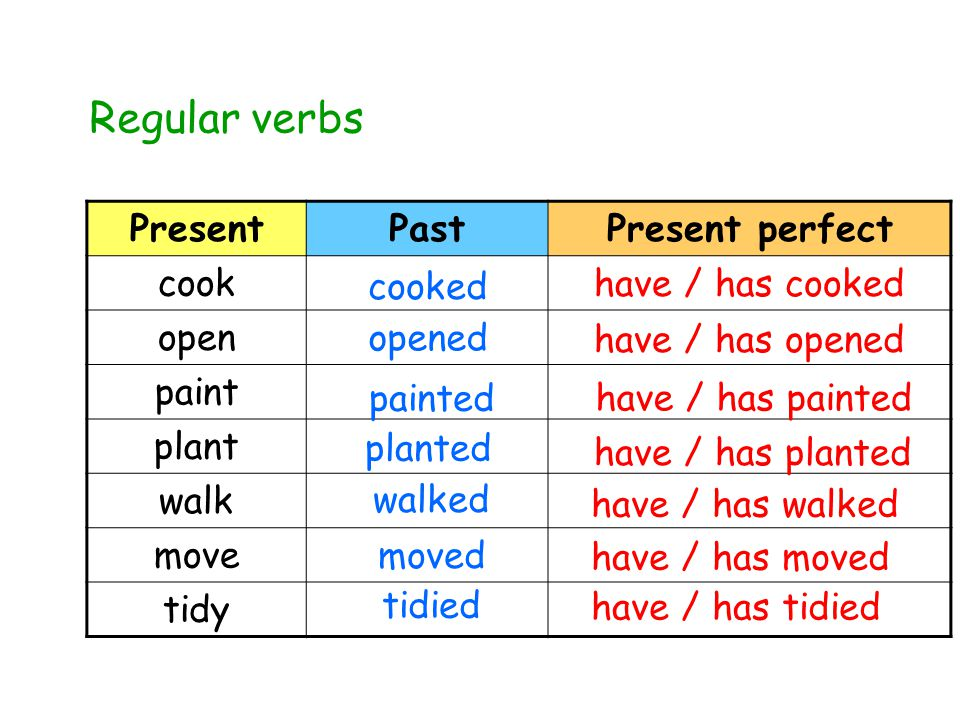 PresentPastPresent perfect cook open paint plant walk move tidy Regular verbs cooked have / has cooked painted have / has painted planted have / has planted walked have / has walked moved have / has moved tidied have / has tidied opened have / has opened