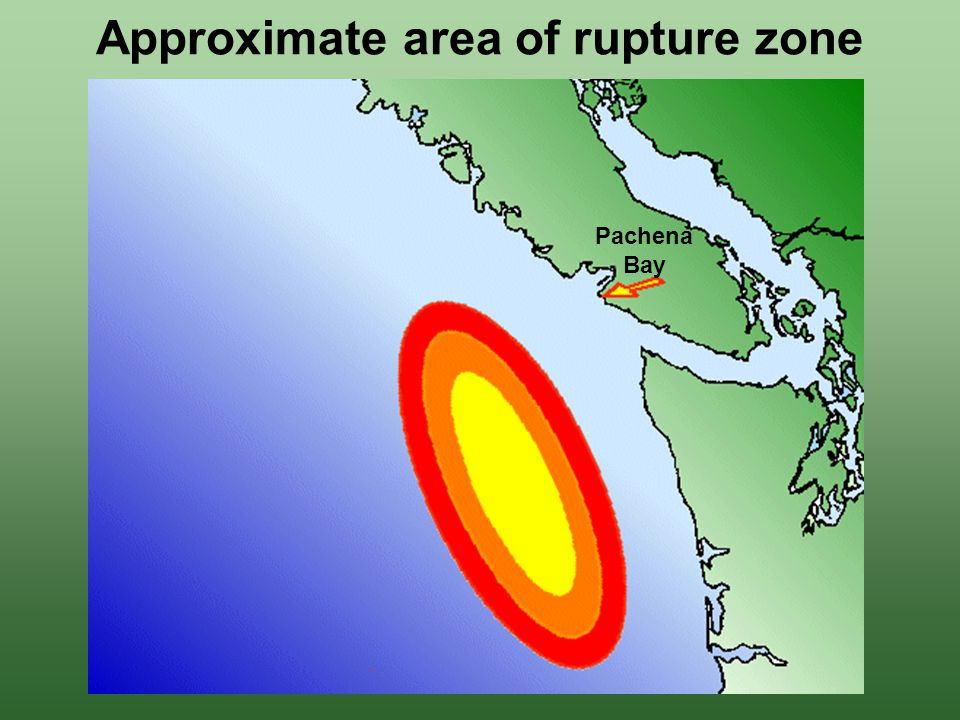 Approximate area of rupture zone Pachena Bay