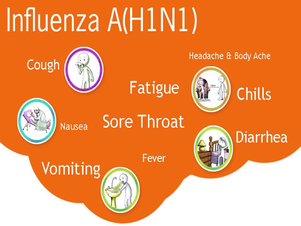 SWINE FLU What Is Swine Flu.