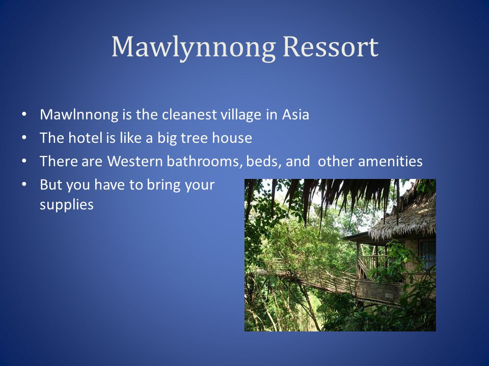 These are some pics of the entrance to Mawlynnong where I will be staying.