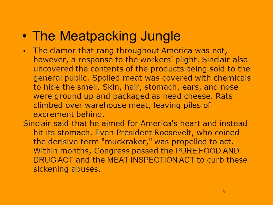 5 The Meatpacking Jungle The clamor that rang throughout America was not, however, a response to the workers' plight. Sinclair also uncovered the cont