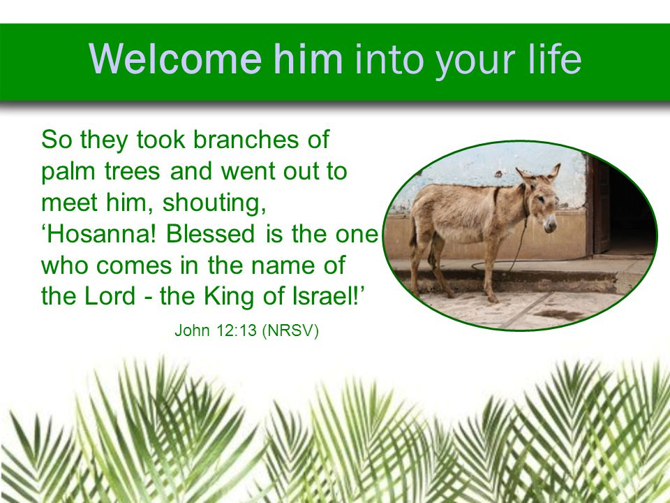 Welcome him into your life So they took branches of palm trees and went out to meet him, shouting, 'Hosanna.