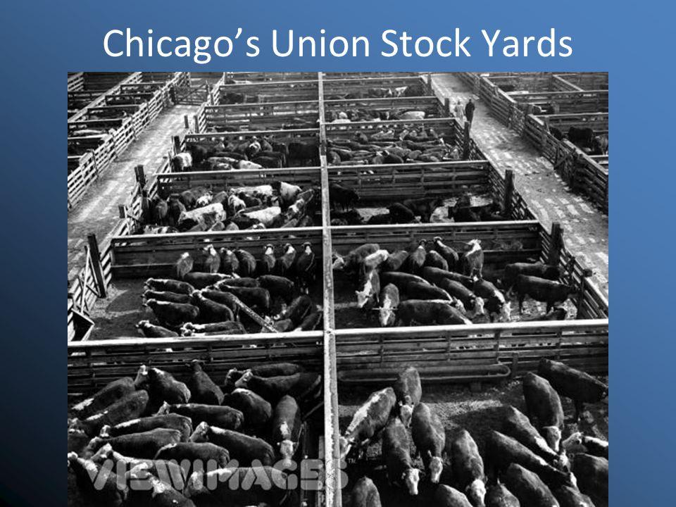 Chicago's Union Stock Yards
