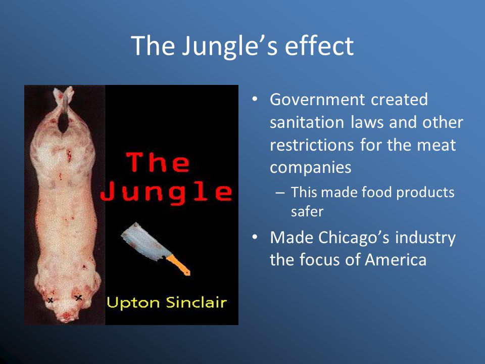 The Jungle's effect Government created sanitation laws and other restrictions for the meat companies – This made food products safer Made Chicago's industry the focus of America