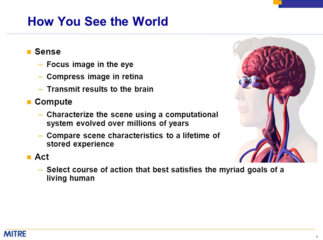 7 How You See the World n Sense –Focus image in the eye –Compress image in retina –Transmit results to the brain n Compute –Characterize the scene using a computational system evolved over millions of years –Compare scene characteristics to a lifetime of stored experience n Act –Select course of action that best satisfies the myriad goals of a living human