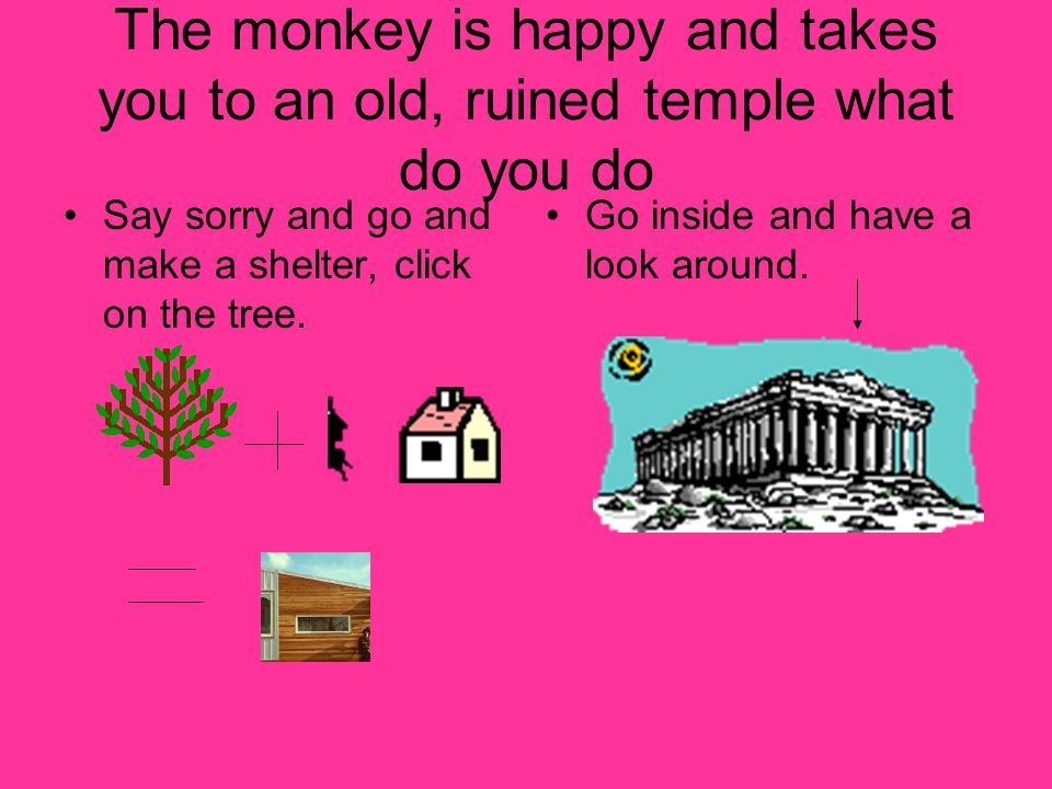 The monkey is happy and takes you to an old, ruined temple what do you do Say sorry and go and make a shelter, click on the tree.