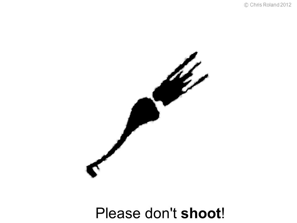 Please don t shoot! © Chris Roland 2012