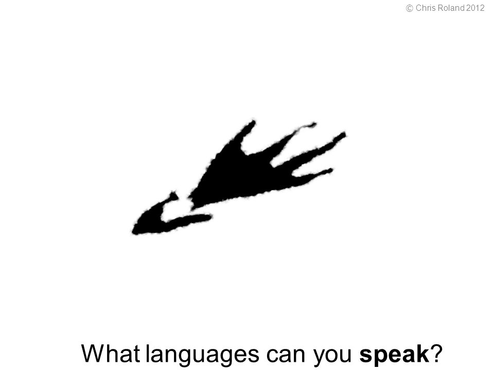 What languages can you speak © Chris Roland 2012