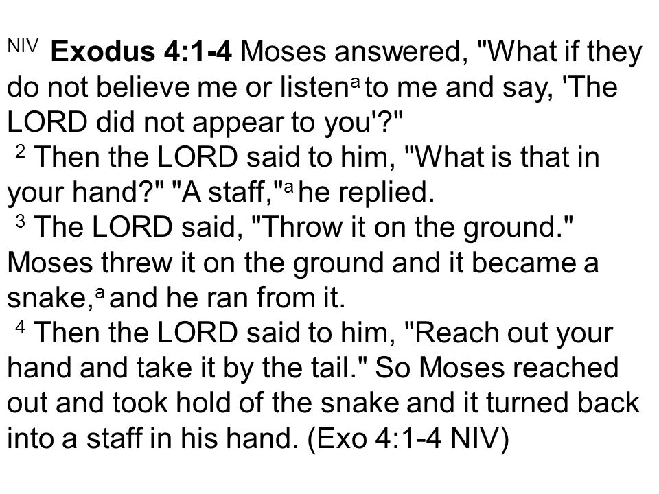 NIV Exodus 4:1-4 Moses answered, What if they do not believe me or listen a to me and say, The LORD did not appear to you ? 2 Then the LORD said to him, What is that in your hand? A staff, a he replied.