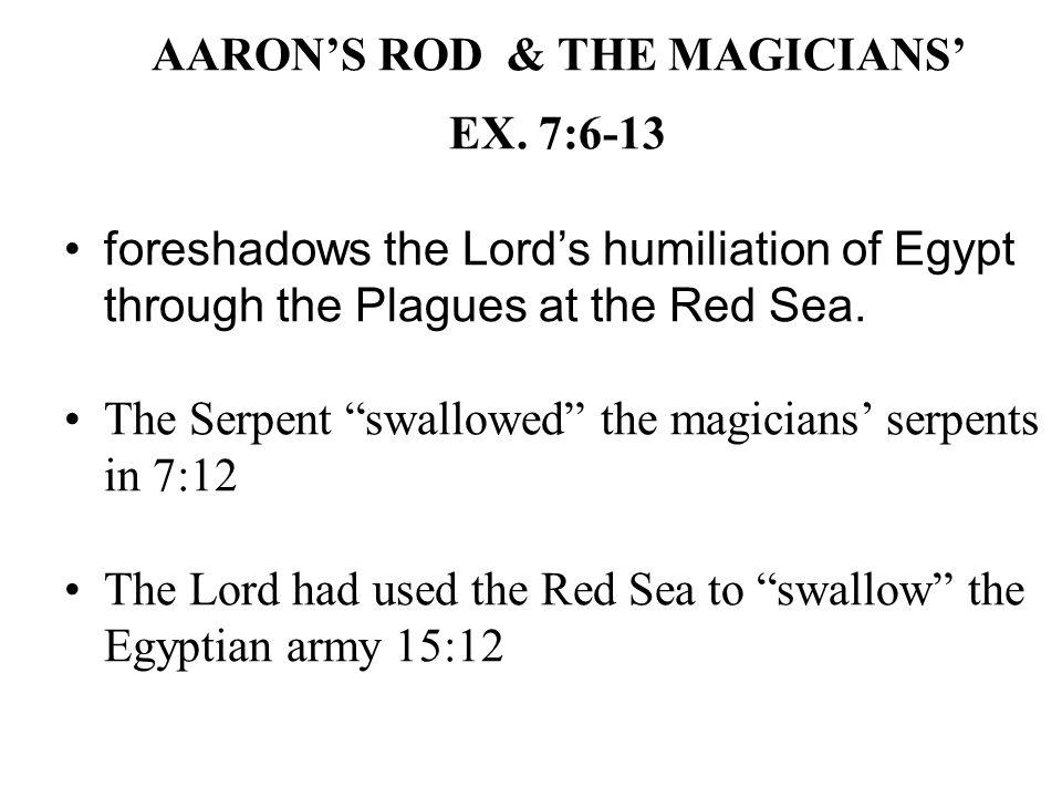AARON'S ROD & THE MAGICIANS' EX.