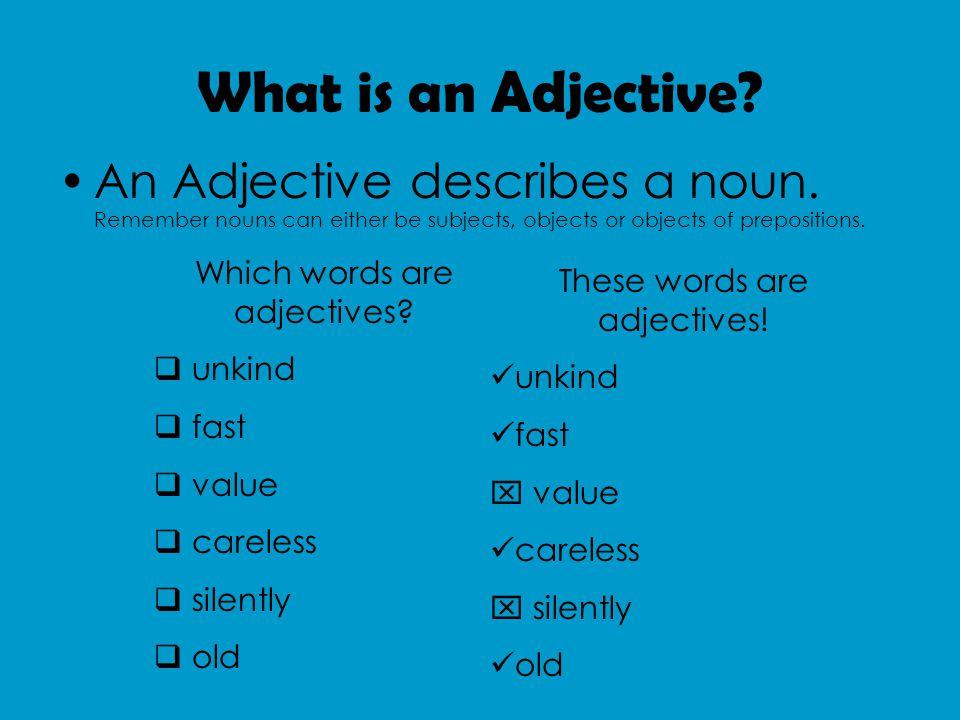 What is an Adjective. An Adjective describes a noun.