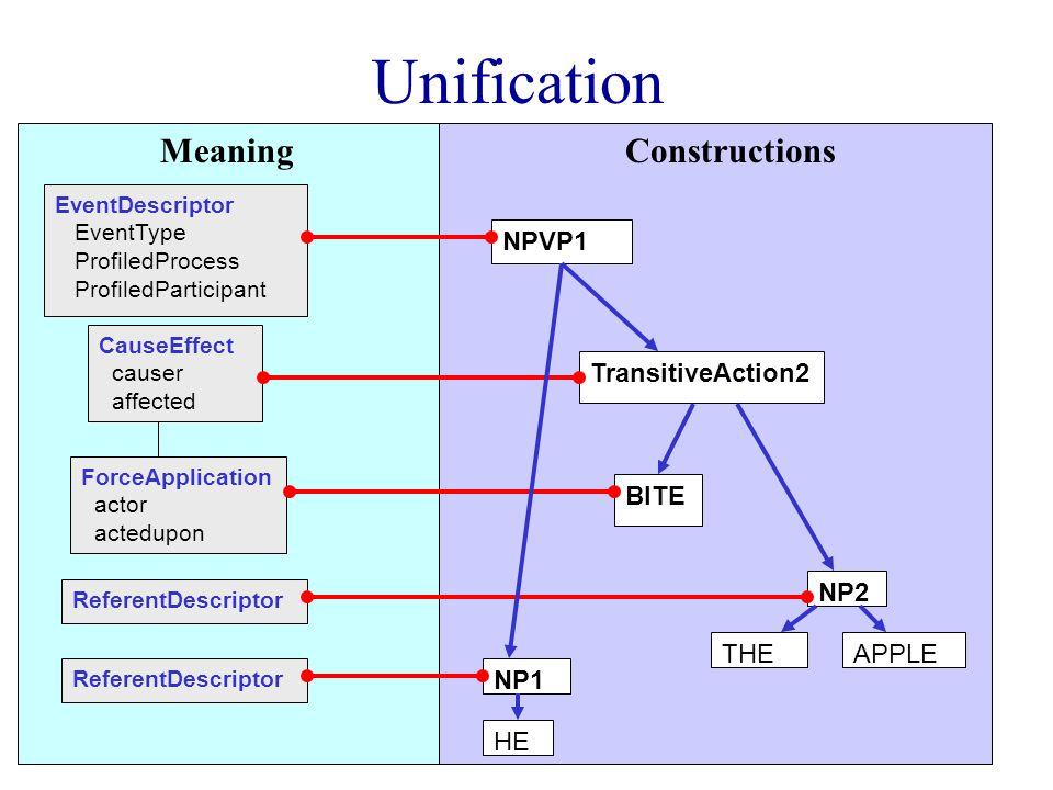 Unification CauseEffect causer affected ForceApplication actor actedupon EventDescriptor EventType ProfiledProcess ProfiledParticipant BITE TransitiveAction2 HE NP1 NPVP1 THEAPPLE NP2 ReferentDescriptor ReferentDescriptor MeaningConstructions