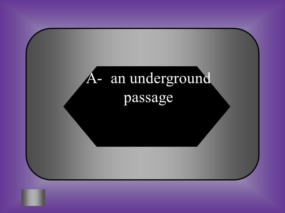 A- an underground passage
