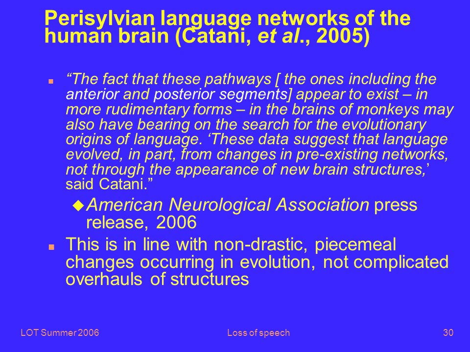 LOT Summer 2006Loss of speech30 Perisylvian language networks of the human brain (Catani, et al., 2005) n The fact that these pathways [ the ones including the anterior and posterior segments] appear to exist – in more rudimentary forms – in the brains of monkeys may also have bearing on the search for the evolutionary origins of language.