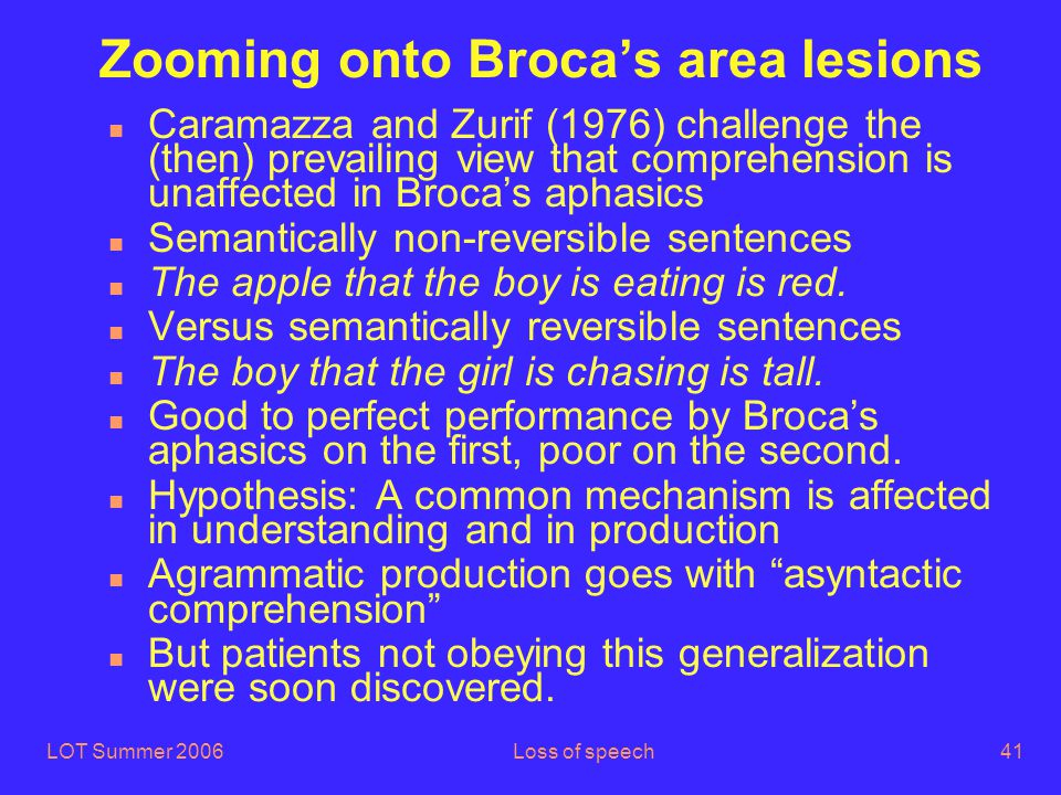 LOT Summer 2006Loss of speech41 Zooming onto Broca's area lesions n Caramazza and Zurif (1976) challenge the (then) prevailing view that comprehension is unaffected in Broca's aphasics n Semantically non-reversible sentences n The apple that the boy is eating is red.