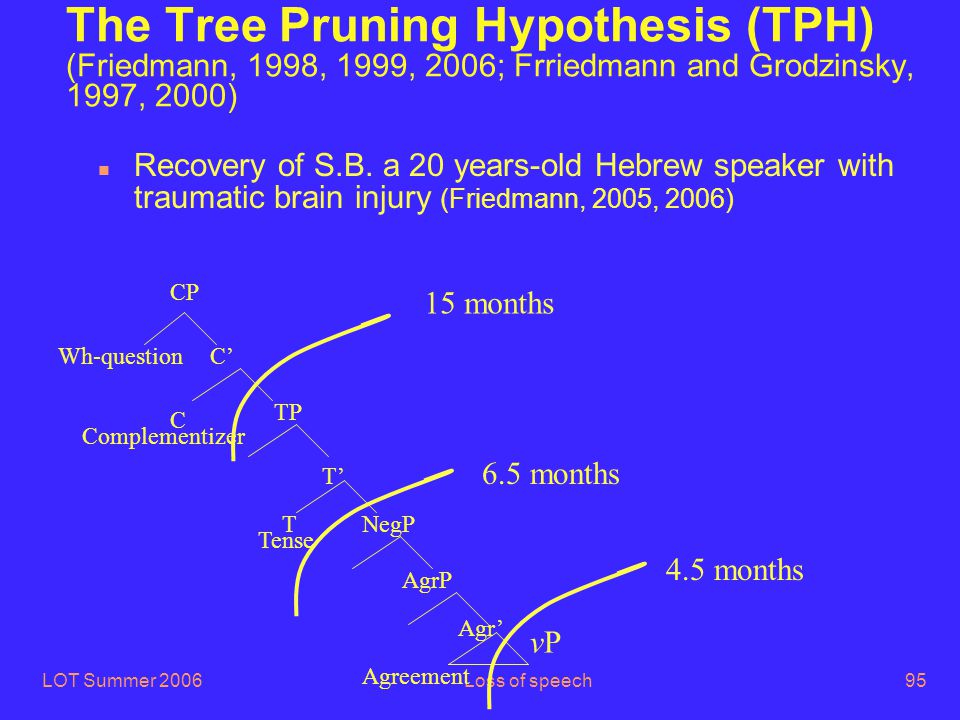 LOT Summer 2006Loss of speech95 The Tree Pruning Hypothesis (TPH) (Friedmann, 1998, 1999, 2006; Frriedmann and Grodzinsky, 1997, 2000) n Recovery of S.B.