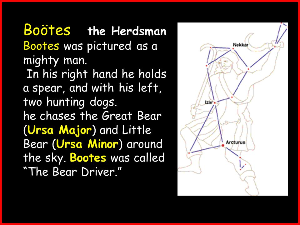 Boötes - the Herdsman Bootes was pictured as a mighty man.