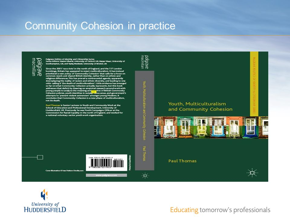 Community Cohesion in practice