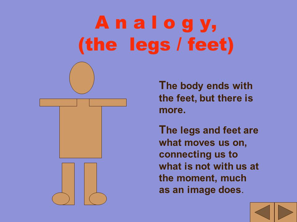 A n a l o g y, (the Torso) T he torso of the human body is what we usually refer to as our body. A nd it is the Body of the essay that is the essay's