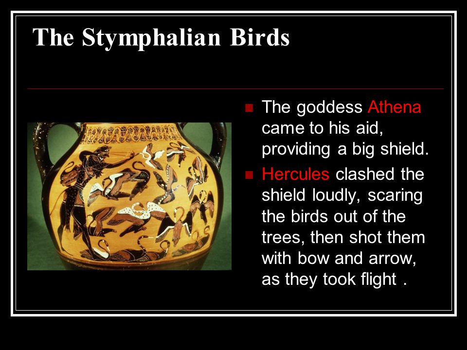 The Stymphalian Birds The goddess Athena came to his aid, providing a big shield.