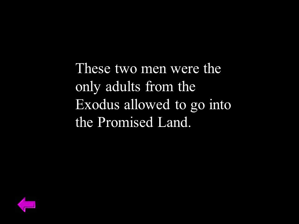 These two men were the only adults from the Exodus allowed to go into the Promised Land.