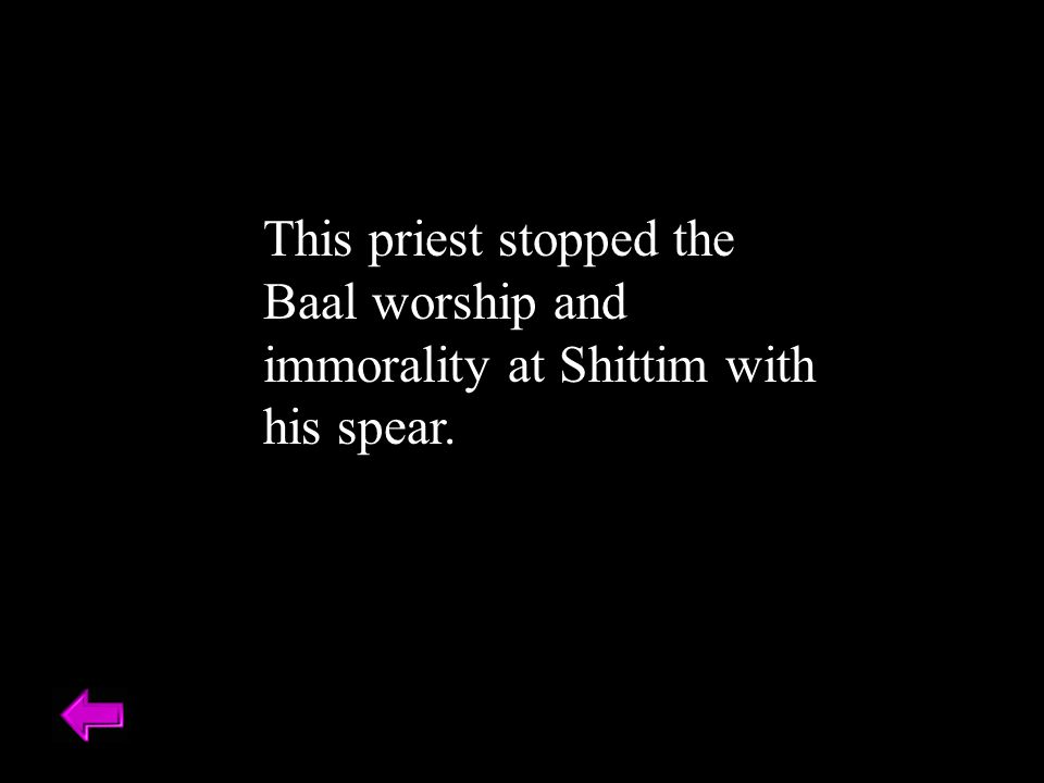 This priest stopped the Baal worship and immorality at Shittim with his spear.
